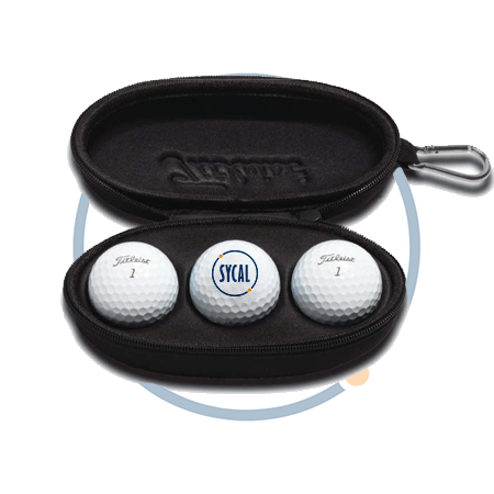 Sunglasses case with promotional golf balls