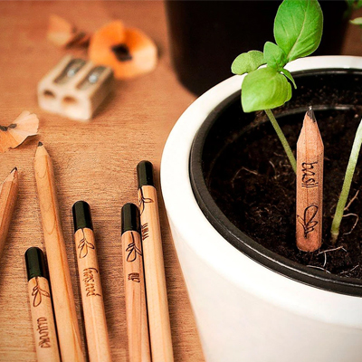 custom sprout pencil