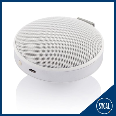 Wireless speaker and microphone